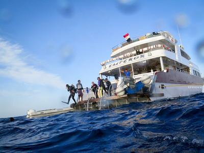 泰国普吉岛PADI潜水考证之旅
